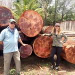 Bob-Mitchell-Chelsea-Mahogany-logs-guatemala