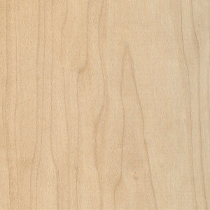 Hard Maple - Mitchell Forest Products