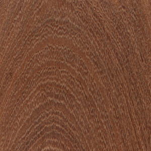 Mayan Mahogany - Mitchell Forest Products