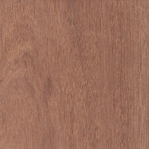 Sapele - Mitchell Forest Products