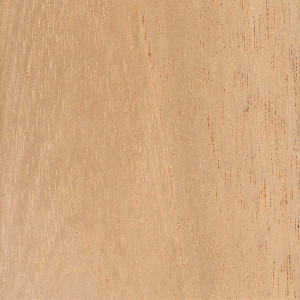 Spanish Cedar - Mitchell Forest Products